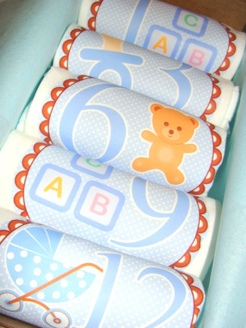 Set of 5 Month 2 Month Baby Milestone Teddy Bear Boy Collection