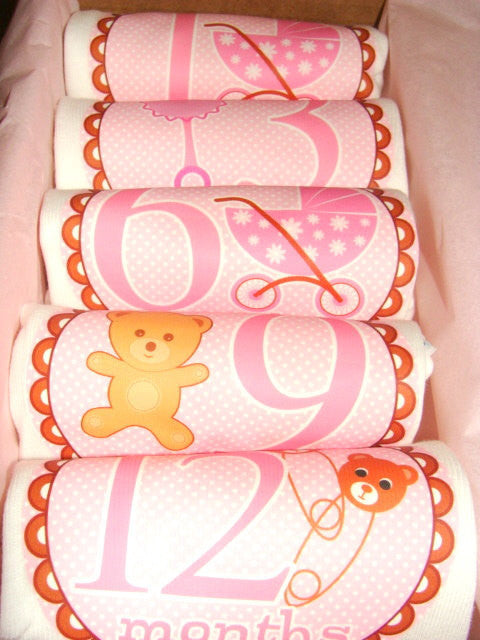 Set of 5 Month 2 Month Baby Milestone Teddy Bear Girl Collection