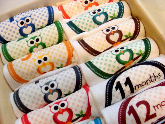 Set of 12 Month 2 Month Baby Milestone Owl Boy Collection