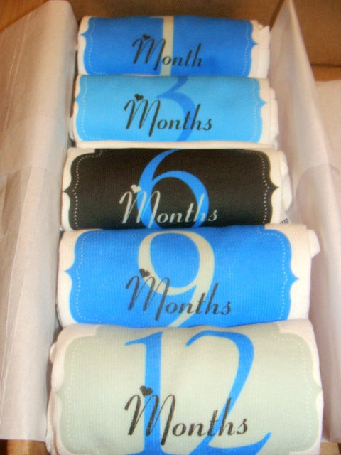 Set of 5 Month 2 Month Baby Milestone Elegant Boy Collection