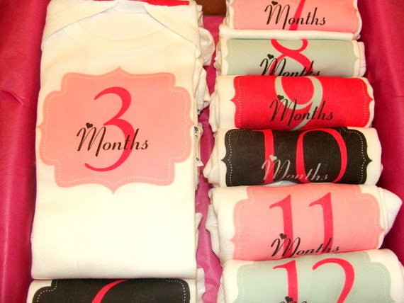 Set of 12 Month 2 Month Baby Milestone Elegant Girl Collection
