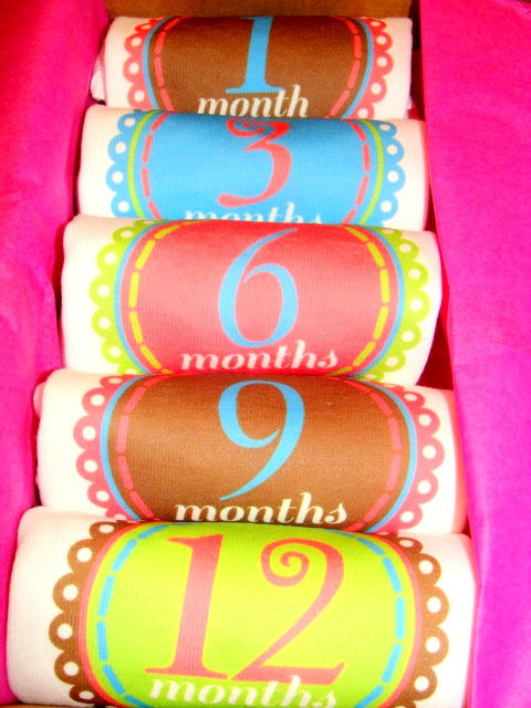 Set of 5 Month 2 Month Baby Milestone Marissa Collection