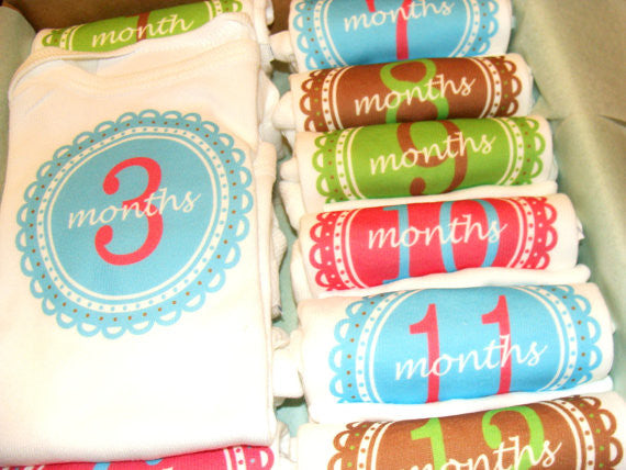 Set of 12 Month 2 Month Baby Milestone Julianna Collection