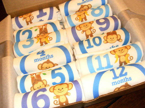 Set of 12 Month 2 Month Baby Milestone Monkey Boy Collection