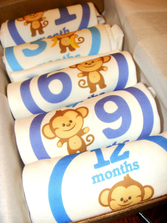 Set of 5 Month 2 Month Baby Milestone Monkey Boy Collection