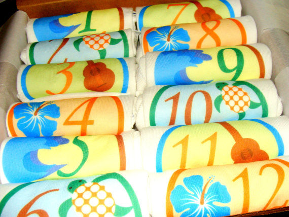 Set of 12 Month 2 Month Baby Milestone Aloha Collection
