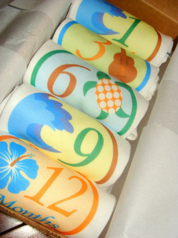 Set of 5 Month 2 Month Baby Milestone Aloha Collection