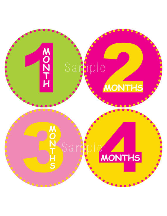 Set of 12 Month 2 Month Baby Milestone All About Girls Collection Monthly Iron On Decals