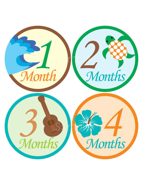 Set of 12 Month 2 Month Baby Milestone Aloha Collection Monthly Iron On Decals