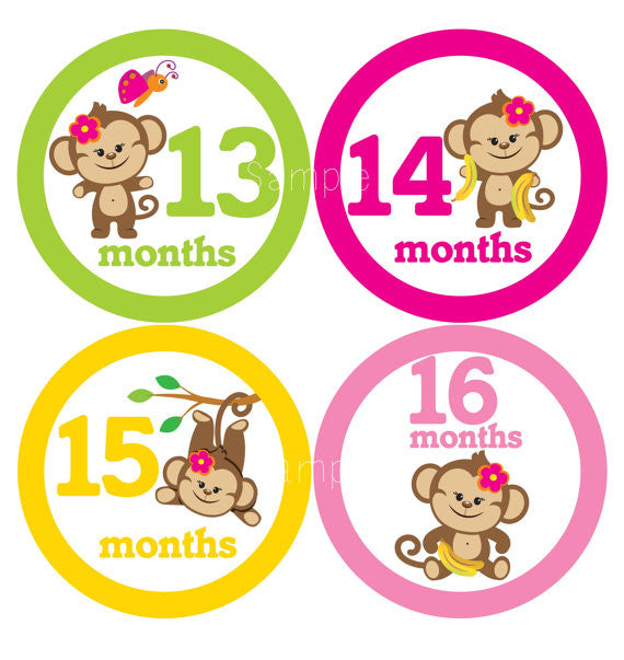 Set of 12 Month 2 Month Baby Monkey Girl 13-24 Months Collection Monthly Stickers