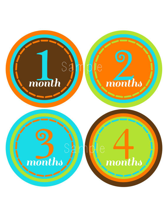 Set of 12 Month 2 Month Milestone Urban Boy Collection Monthly Iron On Decals