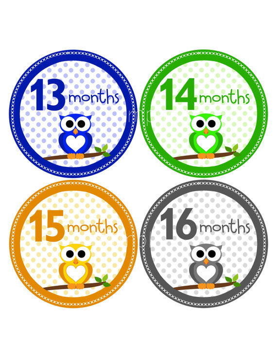 Set of 12 Month 2 Month Milestone Owl 13-24 Months Collection Monthly Iron On Decals