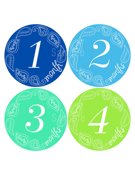 Set of 12 Month 2 Month Baby Paisley Boy Collection Monthly Stickers
