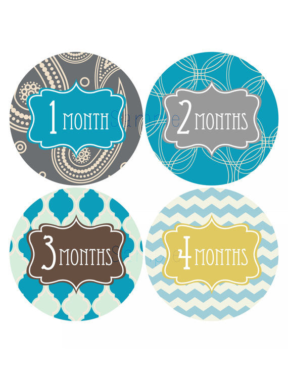 Set of 12 Month 2 Month Baby Milestone Alfonso Collection Monthly Iron On Decals