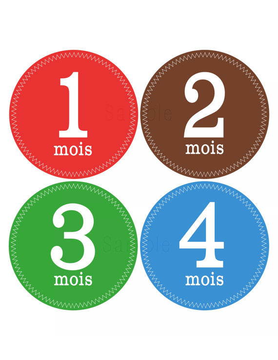 Set of 12 Month 2 Month Baby Milestone in French Colorful Boy Collection Monthly Iron On Decals