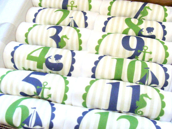 Set of 12 Month 2 Month Baby Milestone Nautical Boy Collection