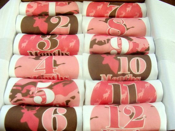 Set of 12 Month 2 Month Baby Milestone Hunter Girl Collection