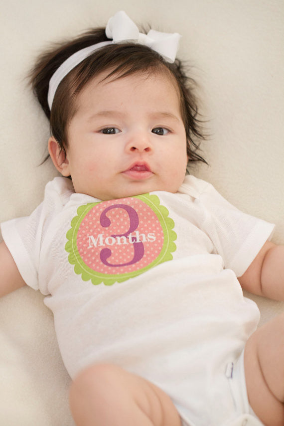 Set of 12 Month 2 Month Milestone Isabella Collection Monthly Iron On Decals
