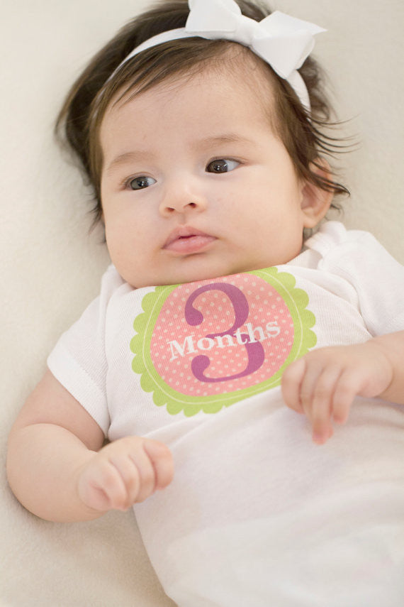 Set of 12 Month 2 Month Baby Isabella Collection Monthly Stickers