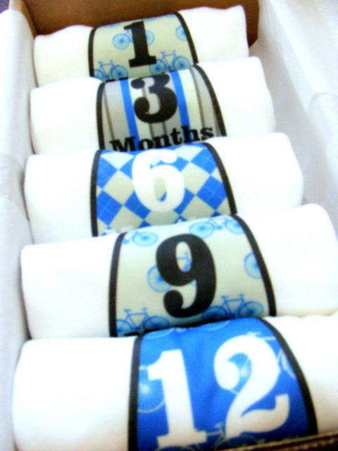 Set of 5 Month 2 Month Baby Milestone Bicycle Preppy Tie Collection