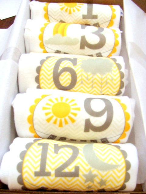 Set of 5 Month 2 Month Baby Milestone You Are My Sunshine Collection