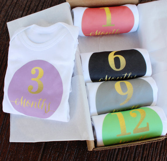 Set of 5 Month 2 Month Baby Milestone Royal Girl Collection