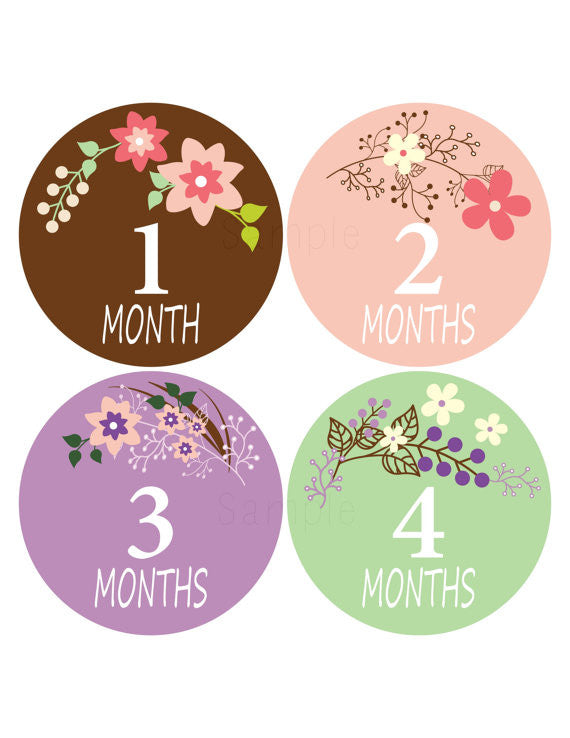 Set of 12 Month 2 Month Baby Valentina Collection Monthly Stickers