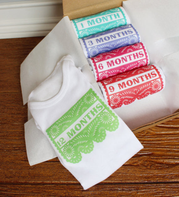 Set of 5 Month 2 Month Baby Milestone Papel Picado Collection