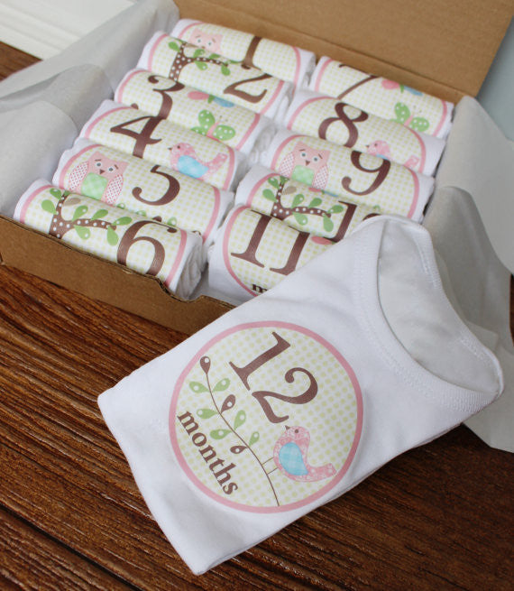 Set of 12 Month 2 Month Baby Milestone Hanna Collection