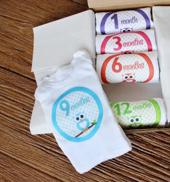 Set of 5 Month 2 Month Baby Milestone Owl Girl Collection