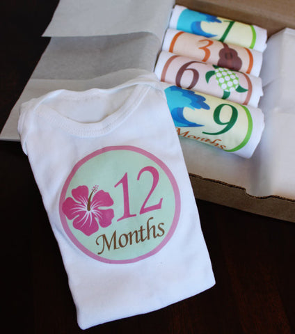 Set of 5 Month 2 Month Baby Milestone Aloha Girl Collection