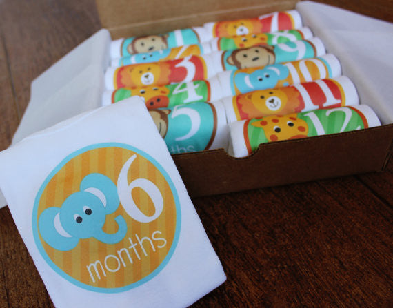 Set of 12 Month 2 Month Baby Milestone Zoo Animals Collection