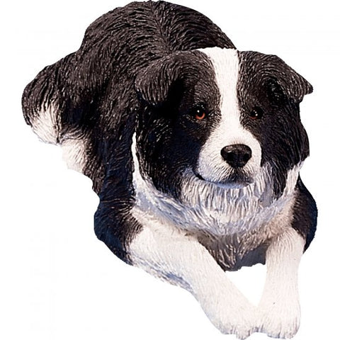 Border Collie Blk/White Sitting. Sandicast OS389 Original Size