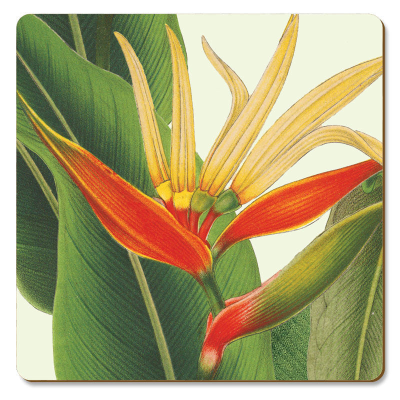 "Coasters Cork-Back ""Heliconia"" of the NY Botanical Garden Designs."