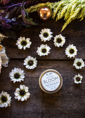 Bloom Lip Service • Enlightening Vanilla + Rose