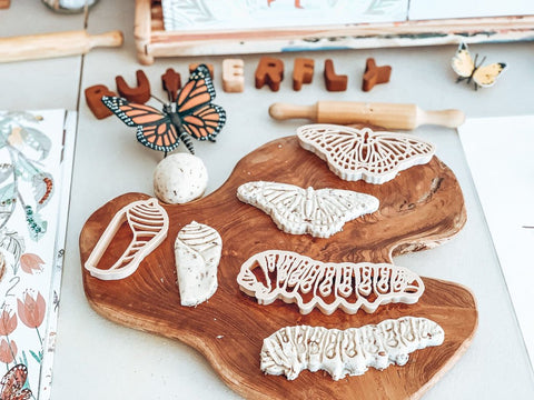 Kinfolk Pantry Monarch Butterfly Lifecycle Eco Cutter Set