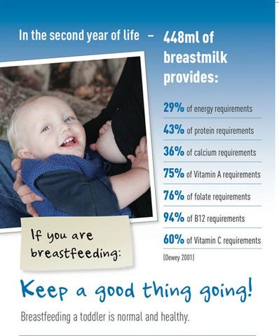 Poster Breastfeeding a Toddler
