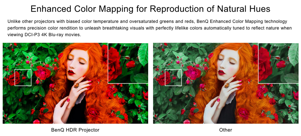 BenQ Enhanced Color Mapping