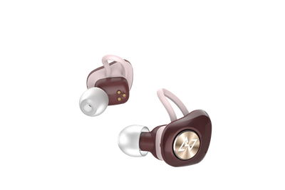 AVIOT TE-D01d True Wireless Earbuds
