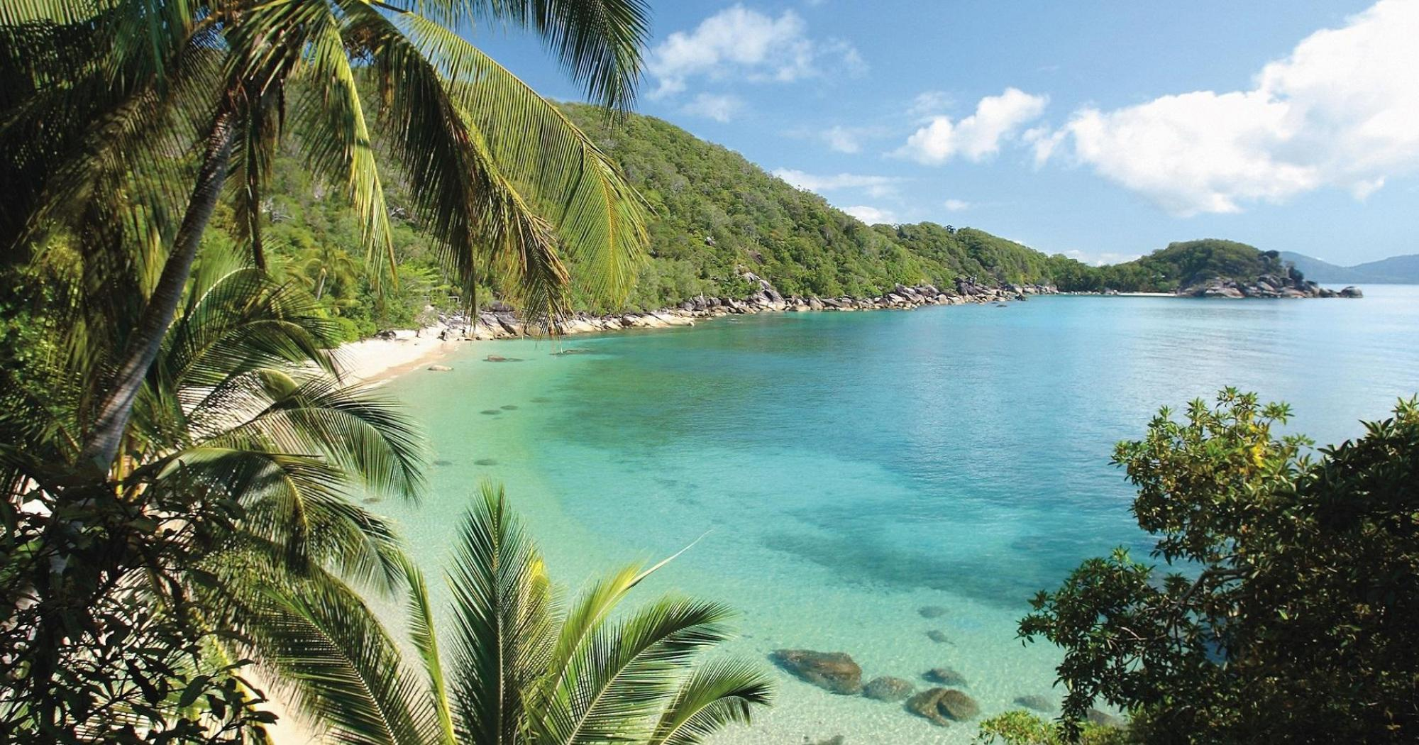 Bedarra Island Resort with turquoise blue water and coconut palm trees image credit bedarra.com.au