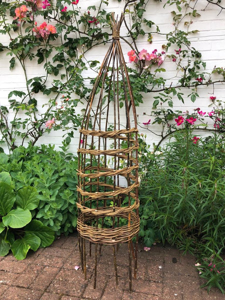 Weave a willow climbing plant support