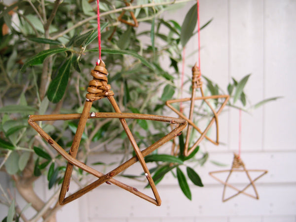 Gift version - willow star online course
