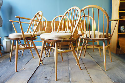 Ercol Windsor Clear Matt Dining Chairs x 6. - erfmann-vintage