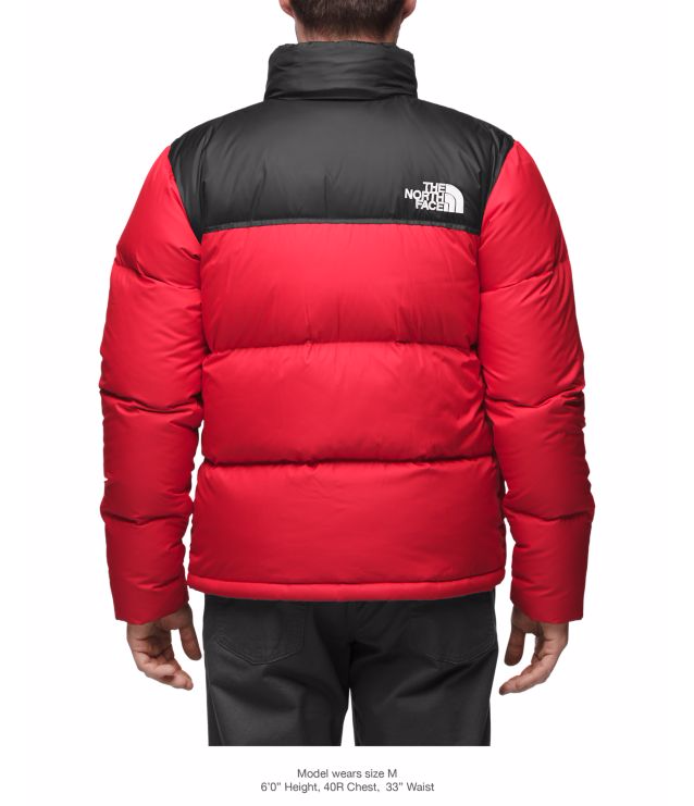 f47bea863 THE NORTH FACE MEN'S NOVELTY NUPTSE JACKET - TNF BLACK/CARDINAL RED GRIZZLY  PRINT -