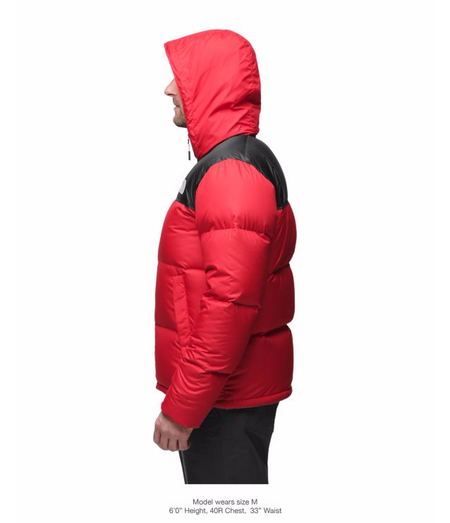 9019a4dee9 ... THE NORTH FACE MEN S NOVELTY NUPTSE JACKET - TNF BLACK CARDINAL RED  GRIZZLY PRINT ...