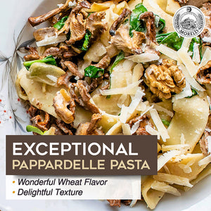 Morelli Pappardelle Pasta with Wheat Germ 17.6oz (500g)
