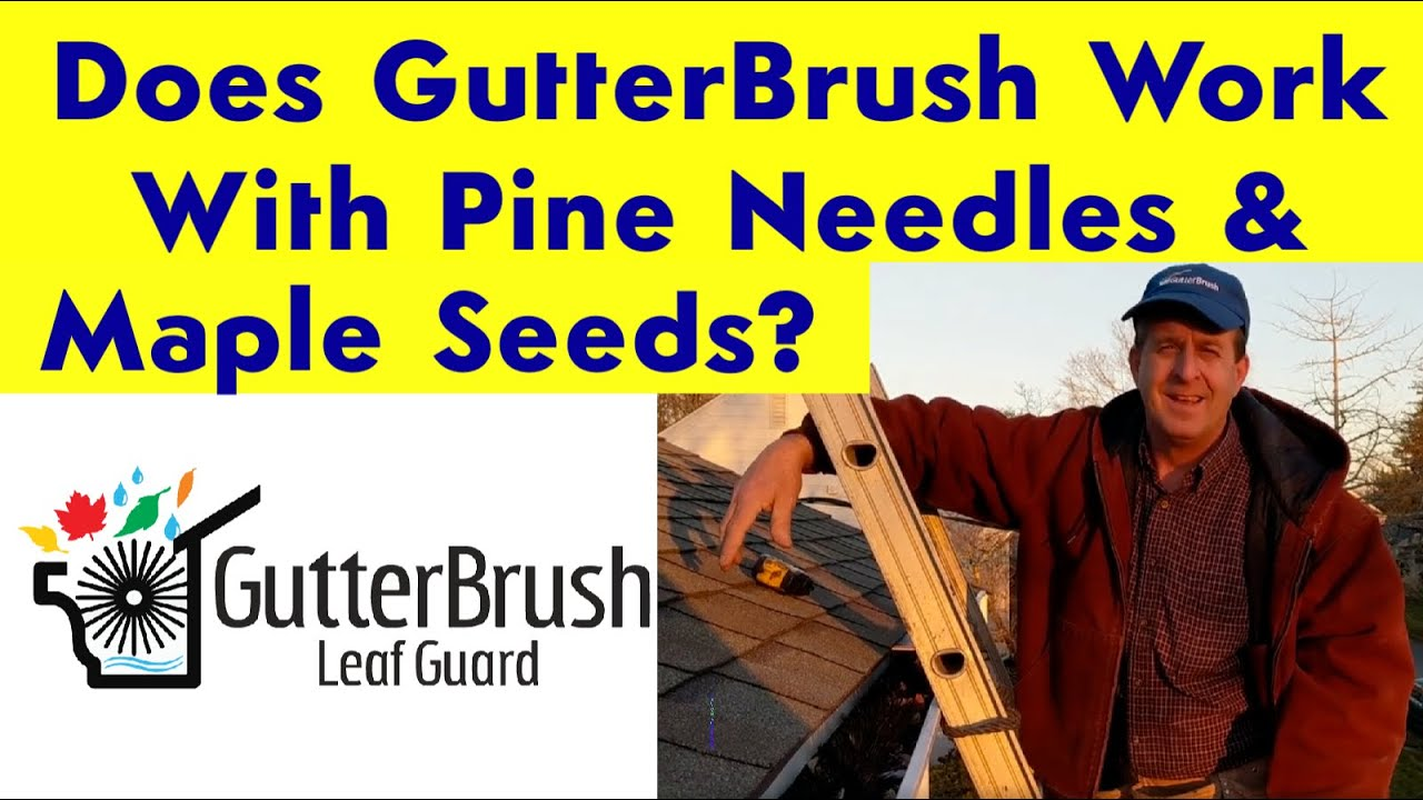 simple gutter guard keeps gutters from clogging with pine needles