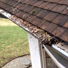 leaves and tree debris on top of gutter screen causing water problem overflow