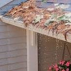 debris on gutter guard causes water problem