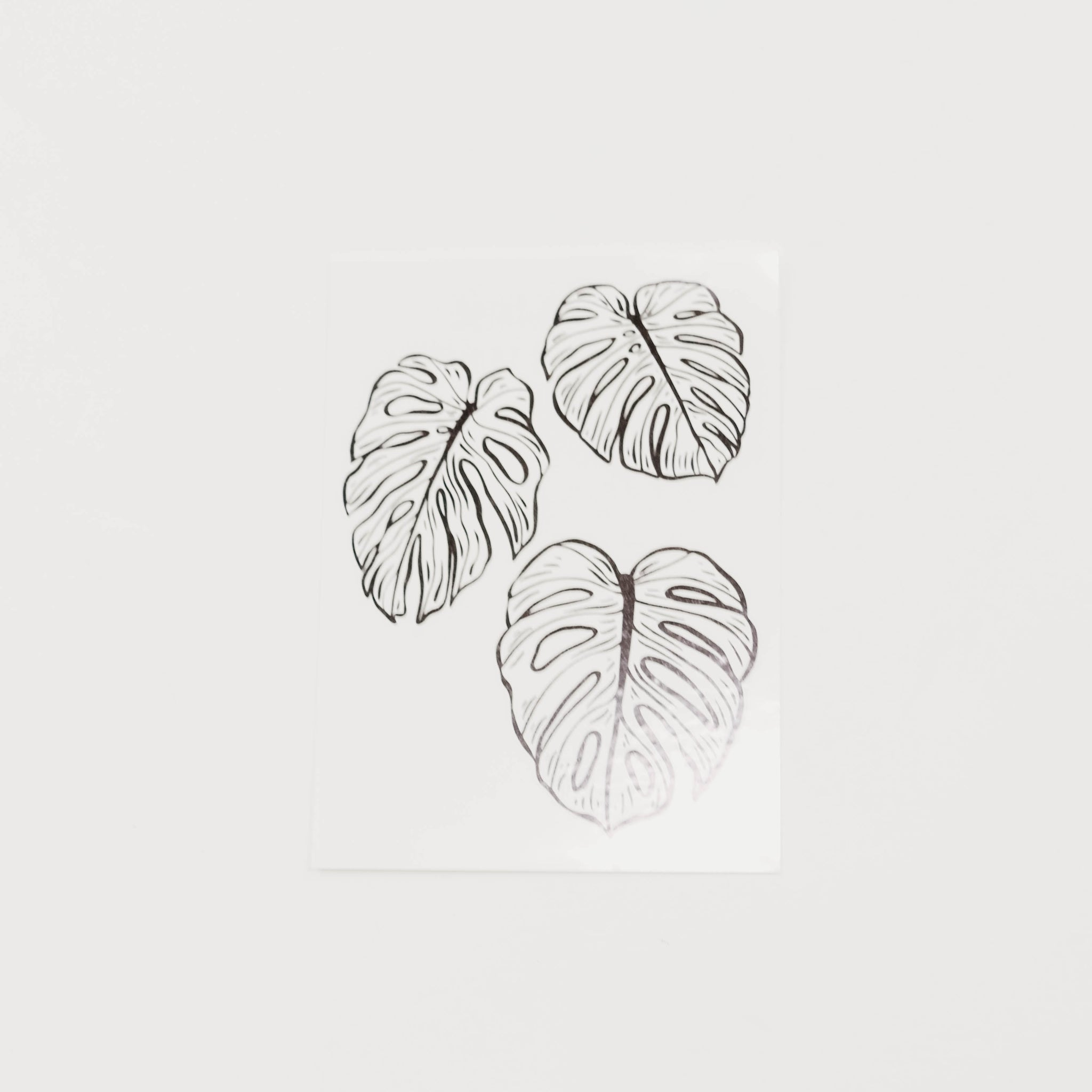 Monstera Deliciosa Temporary Tattoo